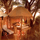 Lodge Safari Packages in Africa