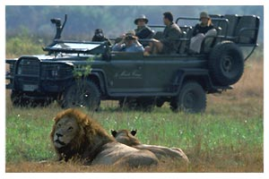 Game viewing in open 4x4 vehicles