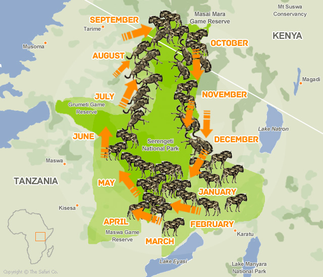 The Great Wildebeest Migration Map