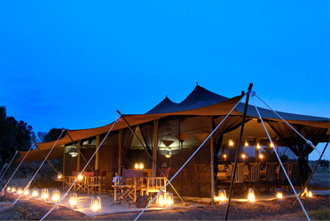 Porini Lion Camp