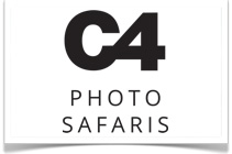 Photographic Safaris in Africa by C4 Photo Safaris