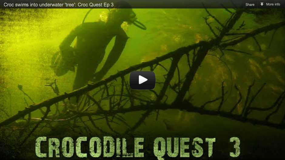 Crocodile Quest Episode 3