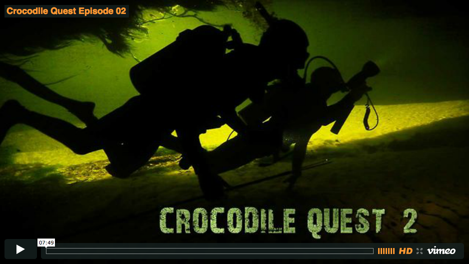 Crocodile Quest Episode 2