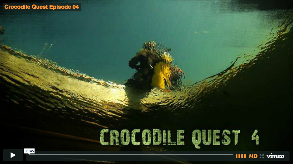 Crocodile Quest Episode 4