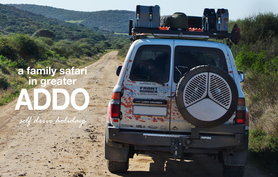 Eastern Cape Family Safari – Greater Addo Route