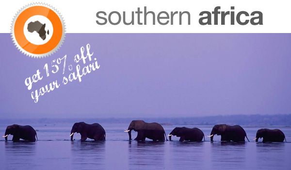 15% Discount On Your Next Safari