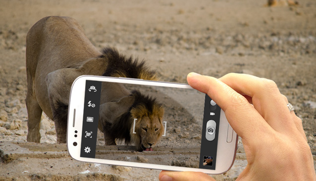 Mobile Apps in Travel and Tourism